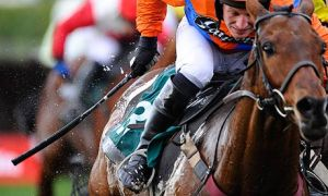 Above: Jockey beats living hell out of horse.  Photo by: guardian.co.uk